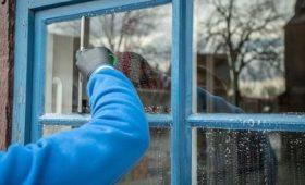 Эколог Ястребцев сообщил, что немытые окна могут нанести вред здоровью человека