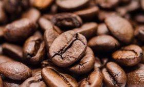 Мясников развеял распространенный миф о вреде кофе для людей с заболеваниями сердца