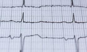 В Австрии создали сердце, способное восстанавливать свои клетки
