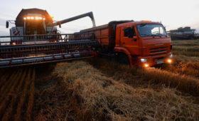 La Nación (Аргентина): в России вступают в действие «плавающие пошлины» на экспорт пшеницы