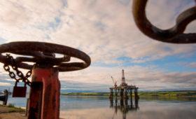 МЭА назвало цену нефти при достижении полной углеродной нейтральности